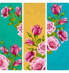 Pink rose frames set vector image
