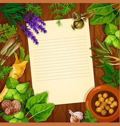 Recipe paper with spices and fresh herbs vector
