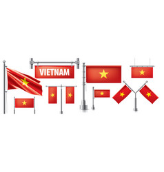 set national flag vietnam in vector image