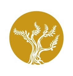 Tree olive branch sketch icon yellow circle vector