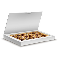 White box of chocolates isolated on white vector