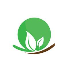 Circle leaf ecology logo image vector