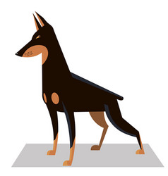 Doberman in a classic position vector