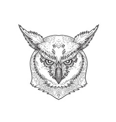Head angry great horned owl tiger owl or hoot vector