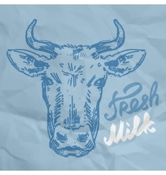 Head of the cow sketch vector