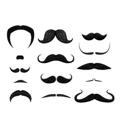 set of different styles of mustache isolated on vector image