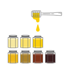several jars with honey of different colors vector image