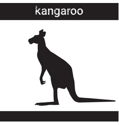 silhouette kangaroo in grunge design style animal vector image