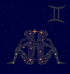 Zodiac sign Gemini over starry sky vector