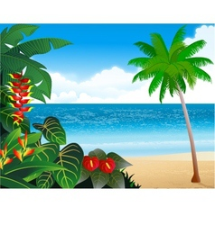 beautiful tropical beach vector image vector image