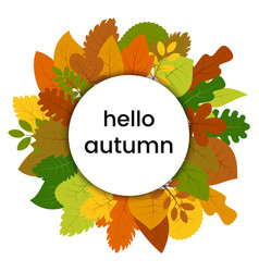 autumn leaves in circle with inscription hello vector image