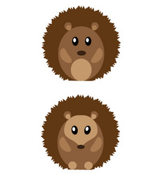 Cute hedgehogs vector