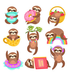 cute sloths funny sleepy sloth isolated wild vector image