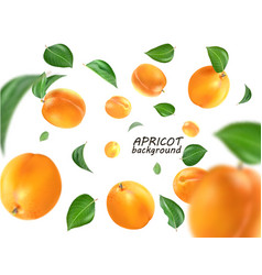 Flying apricot realistic 3d apricots vector