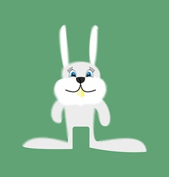Funny Bunny Cartoon white rabbit on a green vector image