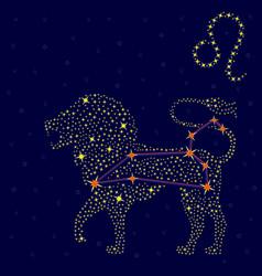 Zodiac sign Leo over starry sky vector