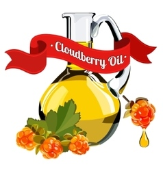 colorful of cloudberry oil 2 vector image vector image