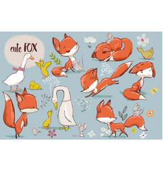 set with cute fox and farm birds vector image vector image