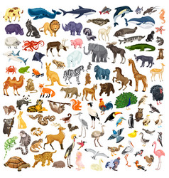Animals icon set cartoon style vector