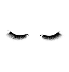 Eyelash extension a beautiful make-up thick vector