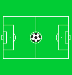 football pitch football field or soccer field vector image