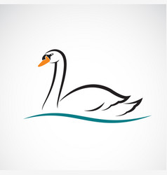 swan on white background wild animals vector image