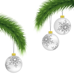 White Christmas balls on pine branches isolated on vector image