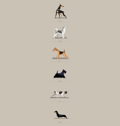 dog breeds set in minimalist style vector image vector image