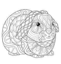 adult coloring bookpage a cute rabbit image for vector image