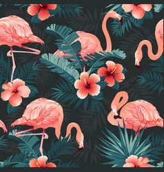 Beautiful flamingo bird and tropical flowers vector