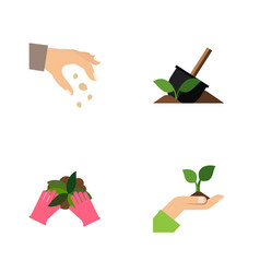 Flat icon sow set of care sow soil and other vector