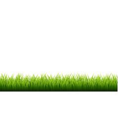 green grass border set on white background vector image