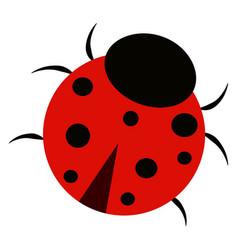 ladybug on white background vector image