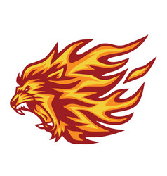 lion head flaming fire logo vector image
