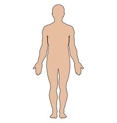 Silhouette human vector