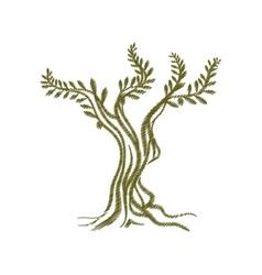 tree olive branch sketch icon vector image