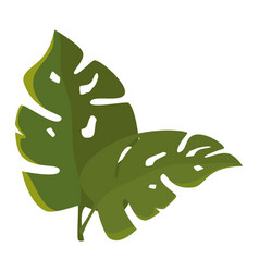 Tropical leaves icon vector