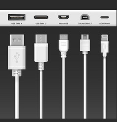 usb cable adapters and phone connector wires vector image