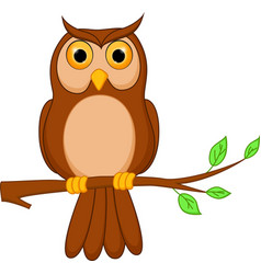owl cartoon standing on tree vector image