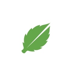 Leaves Icon logo element for template vector image vector image