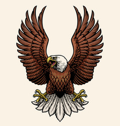 Angry bald eagle in hand drawn style vector