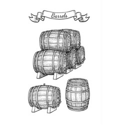 barrels set isolated on white vector image