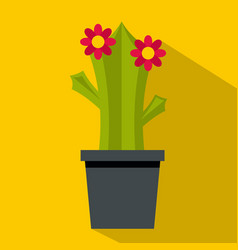 Cactus with flowers icon flat style vector