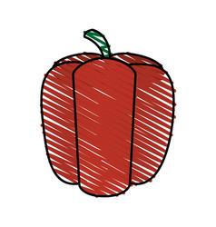 Color crayon stripe red pepper vegetable food vector