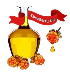 colorful of cloudberry oil 2 vector image