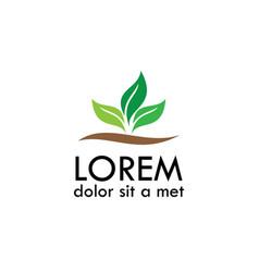 leaf plant organic logo vector image