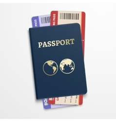 Passport with airline tickets International vector image