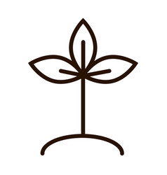 Plant ground nature environment ecology line icon vector