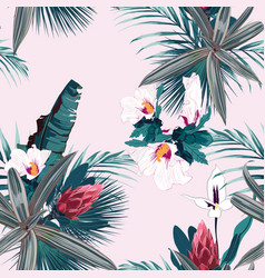 Seamless pattern with exotic tropical plants vector