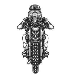 Vintage ferocious tiger head biker vector